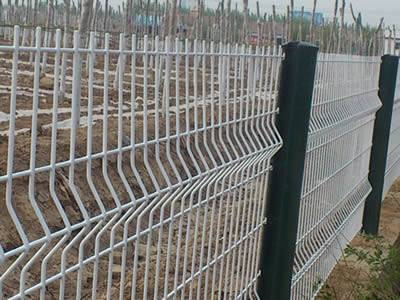 several 3d security fences with two curves