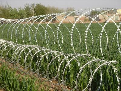 Two lines of concertina razor wires are installed in the farmland.