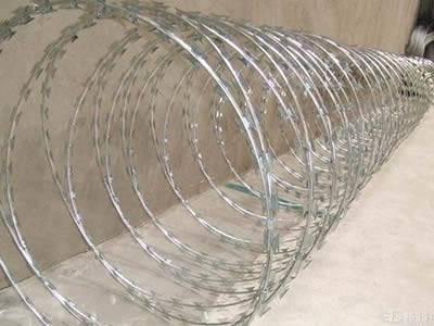 A roll of galvanized concertina razor wire on the ground.