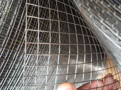 Several Different Type Galvanized Welded Wire Mesh
